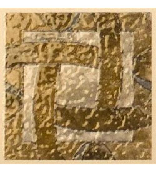 (A2037/TU6001) Салон 9,6*9,6