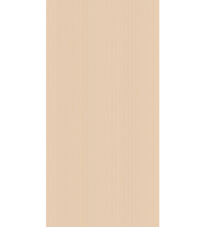 10-01-11-877 Плитка облицовочная   «Банкетный» 50*25*9