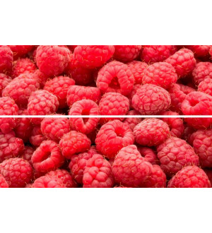Beveled Tile Raspberry 10*30 панно (TD-BT-P-RB)