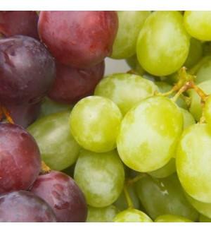 (04-00-55-140-5) Декор Фрукты виноград-1 200*200*7,5мм