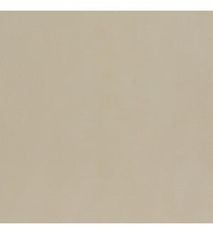 Allegro beige PG 01 450х450