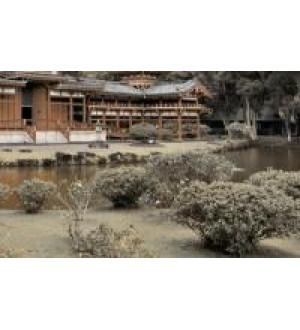 Декор Bamboo 250*400 бежевый №4