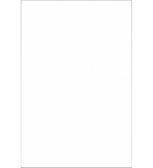 (10310038) Облиц.пл. бел глянец 20*30