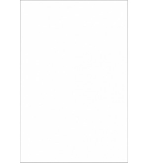 (10310039) Облиц.пл. бел мат 20*30
