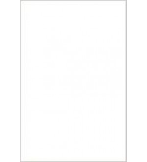 (110000) Моноколор облиц.пл.20*30 бел
