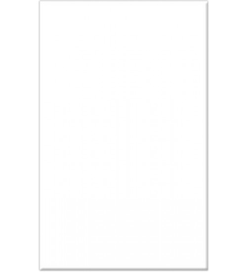 (120000) Моноколор облиц.пл. 25*40 бел