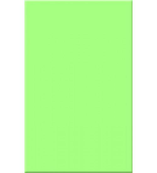 (120021) Моноколор облиц.пл. 25*40 салатн