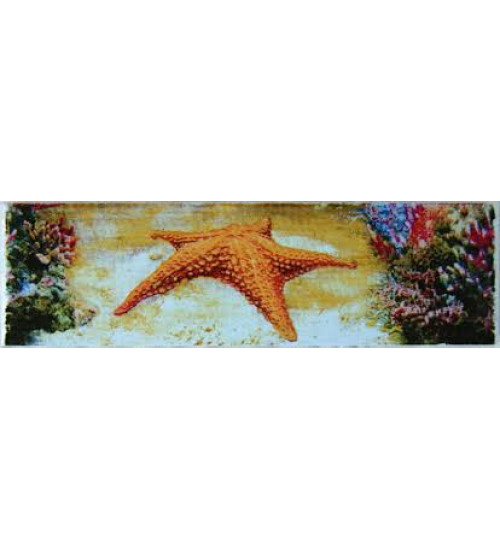 (271911-1) Адриатика Бордюр 25*8 звезда