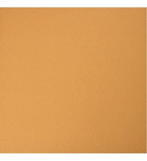 (GDMAJ009) Тюльпан напол.пл. оранж 30*30