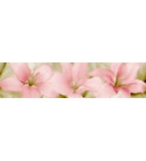 Бордюр Стайл мора 5700 8,2*33,3 розовый