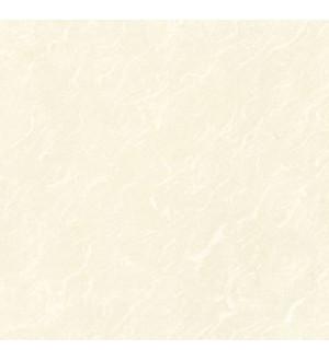 AJ6056 Керамогранит бежевые перья 60*60