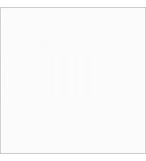 AJC6200 Керамогранит белый моноколор 60*60